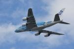 いずみわおさんが、関西国際空港で撮影した全日空 A380-841の航空フォト(写真)