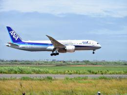 キョウさんが、仙台空港で撮影した全日空 787-9の航空フォト(飛行機 写真・画像)