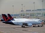 くろぼしさんが、ブリュッセル国際空港で撮影したブリュッセル航空 A319-111の航空フォト(飛行機 写真・画像)