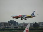 ヒコーキグモさんが、福岡空港で撮影した全日空 777-281/ERの航空フォト(写真)