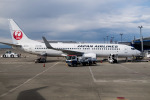 delawakaさんが、中部国際空港で撮影した日本航空 737-846の航空フォト(写真)