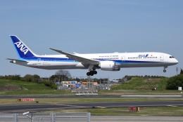 さくらの城南山。さんが、成田国際空港で撮影した全日空 787-10の航空フォト(写真)