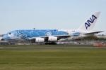 さくらの城南山。さんが、成田国際空港で撮影した全日空 A380-841の航空フォト(飛行機 写真・画像)