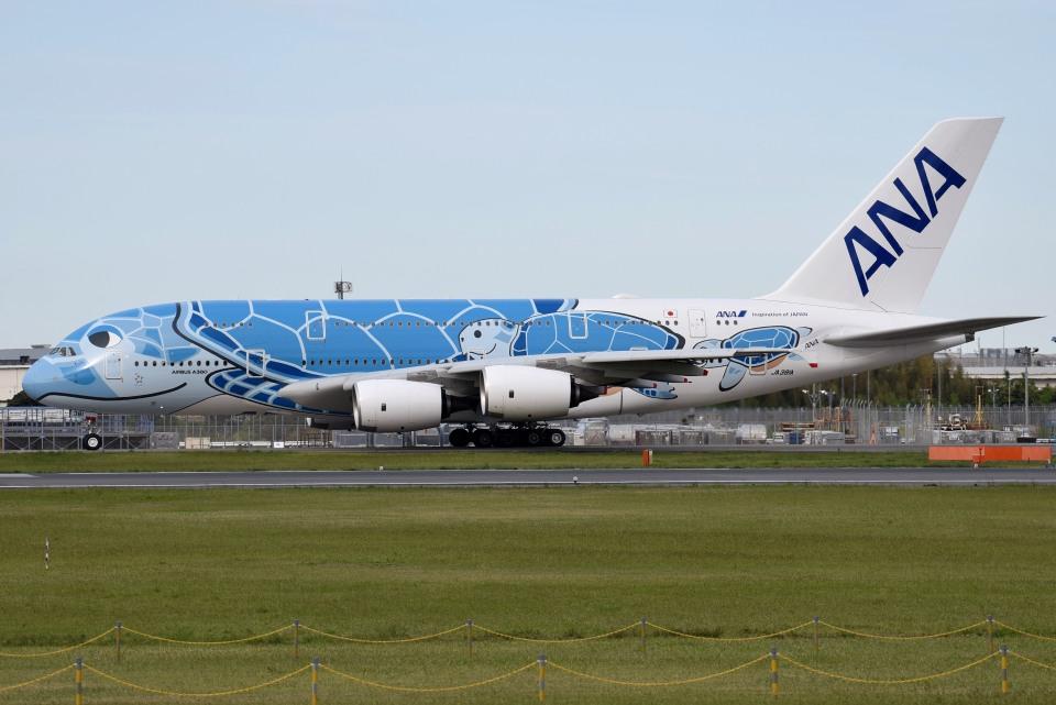 さくらの城南山。さんの全日空 Airbus A380 (JA381A) 航空フォト