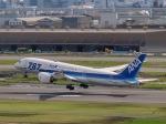 さんぜんさんが、羽田空港で撮影した全日空 787-8 Dreamlinerの航空フォト(写真)
