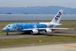 ウッディーさんが、中部国際空港で撮影した全日空 A380-841の航空フォト(写真)