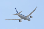 kuro2059さんが、伊丹空港で撮影した全日空 787-8 Dreamlinerの航空フォト(写真)