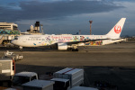 delawakaさんが、伊丹空港で撮影した日本航空 767-346/ERの航空フォト(飛行機 写真・画像)