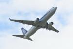 kuro2059さんが、伊丹空港で撮影した全日空 737-8ALの航空フォト(写真)