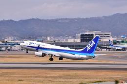 KAGURA-747さんが、伊丹空港で撮影した全日空 737-881の航空フォト(写真)
