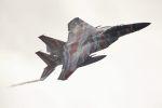 こびとさんさんが、小松空港で撮影した航空自衛隊 F-15DJ Eagleの航空フォト(写真)