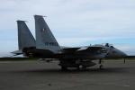 twining07さんが、千歳基地で撮影した航空自衛隊 F-15J Eagleの航空フォト(写真)