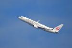 kaz787さんが、伊丹空港で撮影した日本航空 737-846の航空フォト(写真)
