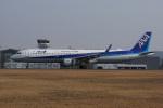 神宮寺ももさんが、広島空港で撮影した全日空 A321-211の航空フォト(写真)