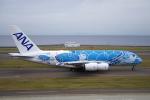 yabyanさんが、中部国際空港で撮影した全日空 A380-841の航空フォト(飛行機 写真・画像)
