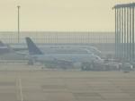 worldstar777さんが、関西国際空港で撮影したDCアヴィエーション・マルタ A318-112 CJ Eliteの航空フォト(写真)