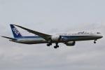 camelliaさんが、成田国際空港で撮影した全日空 787-10の航空フォト(写真)