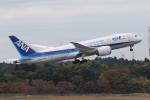 MA~RUさんが、成田国際空港で撮影した全日空 787-8 Dreamlinerの航空フォト(写真)