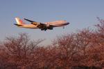yabyanさんが、成田国際空港で撮影したチャイナエアライン 747-409F/SCDの航空フォト(飛行機 写真・画像)