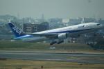 FRTさんが、伊丹空港で撮影した全日空 777-281の航空フォト(飛行機 写真・画像)