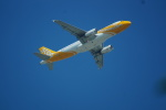 FRTさんが、タンソンニャット国際空港で撮影したスクート A320-232の航空フォト(飛行機 写真・画像)