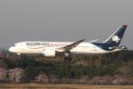 yabyanさんが、成田国際空港で撮影したアエロメヒコ航空 787-8 Dreamlinerの航空フォト(飛行機 写真・画像)
