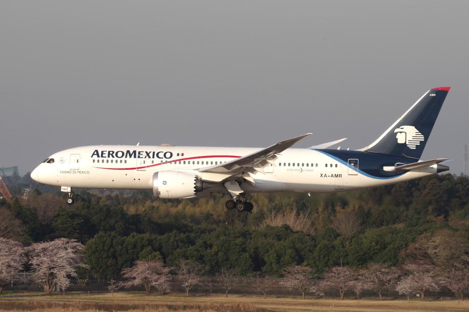 yabyanさんのアエロメヒコ航空 Boeing 787-8 Dreamliner (XA-AMR) 航空フォト