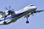 パンダさんが、成田国際空港で撮影したANAウイングス DHC-8-402Q Dash 8の航空フォト(写真)