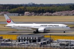 yabyanさんが、成田国際空港で撮影した日本航空 787-9の航空フォト(飛行機 写真・画像)