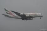 みなかもさんが、成田国際空港で撮影したエミレーツ航空 A380-861の航空フォト(写真)