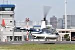 ヘリオスさんが、東京ヘリポートで撮影した日本個人所有 R44 Ravenの航空フォト(写真)