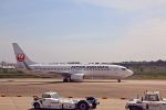Jin Bergqiさんが、成田国際空港で撮影した日本航空 737-846の航空フォト(写真)