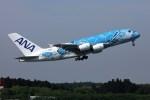 sin747さんが、成田国際空港で撮影した全日空 A380-841の航空フォト(飛行機 写真・画像)