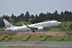ぬま_FJHさんが、成田国際空港で撮影した日本航空 737-846の航空フォト(写真)