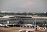 さもんほうさくさんが、羽田空港で撮影したジェットスター・ジャパン A320-232の航空フォト(写真)