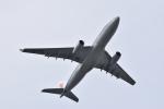 ぬま_FJHさんが、成田国際空港で撮影した中国国際航空 A330-243の航空フォト(写真)