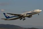 endress voyageさんが、岡山空港で撮影した全日空 777-281の航空フォト(飛行機 写真・画像)