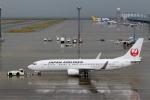 ハピネスさんが、中部国際空港で撮影した日本航空 737-846の航空フォト(写真)