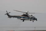 uhfxさんが、関西国際空港で撮影したユーロヘリ EC225LP Super Puma Mk2+の航空フォト(飛行機 写真・画像)