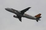 uhfxさんが、関西国際空港で撮影したタイガーエア台湾 A320-232の航空フォト(飛行機 写真・画像)