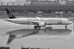 るかぬすさんが、羽田空港で撮影した全日空 787-9の航空フォト(写真)
