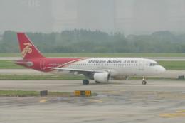 KKiSMさんが、南京禄口国際空港で撮影した深圳航空 A320-214の航空フォト(飛行機 写真・画像)