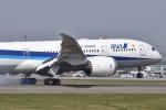 るかぬすさんが、函館空港で撮影した全日空 787-8 Dreamlinerの航空フォト(写真)