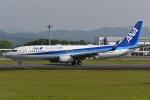 たっしーさんが、熊本空港で撮影した全日空 737-8ALの航空フォト(写真)