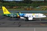 たみぃさんが、成田国際空港で撮影したロイヤルブルネイ航空 A320-251Nの航空フォト(写真)