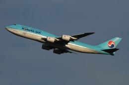 twining07さんが、成田国際空港で撮影した大韓航空 747-8B5の航空フォト(飛行機 写真・画像)