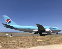 gratiii738さんが、ダニエル・K・イノウエ国際空港で撮影した大韓航空 747-8B5の航空フォト(飛行機 写真・画像)