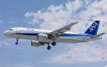 airbandさんが、羽田空港で撮影した全日空 A320-211の航空フォト(写真)