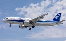 airbandさんが、羽田空港で撮影した全日空 A320-211の航空フォト(飛行機 写真・画像)