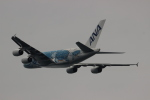 uhfxさんが、関西国際空港で撮影した全日空 A380-841の航空フォト(飛行機 写真・画像)